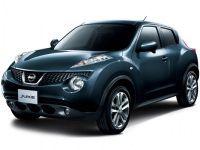 Автомобильные коврики Eva Nissan Juke (2010-2014) 2WD
